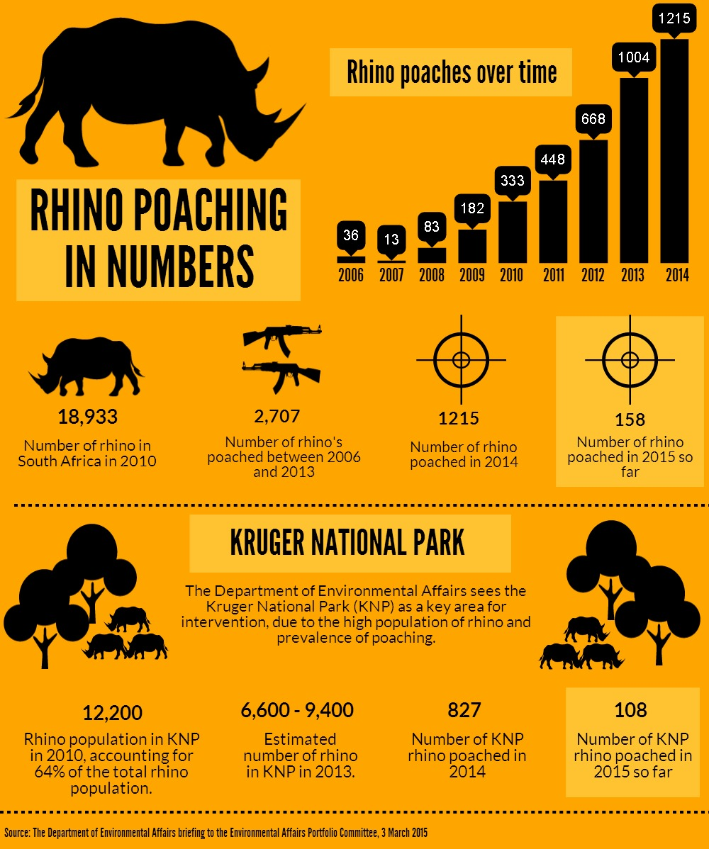Image result for rhino poaching statistics